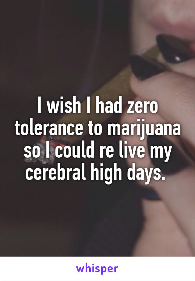 I wish I had zero tolerance to marijuana so I could re live my cerebral high days.
