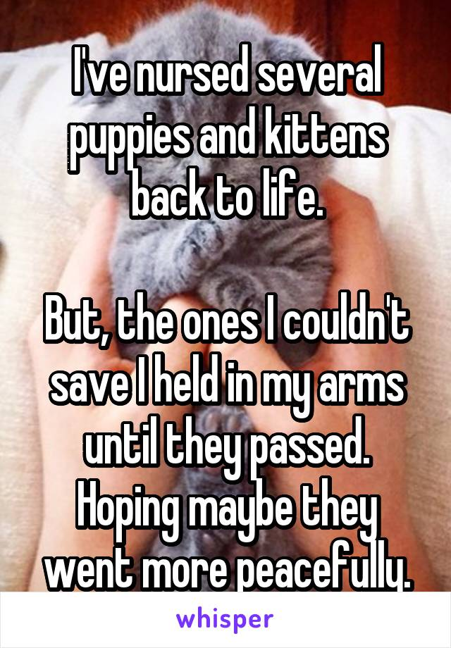 I've nursed several puppies and kittens back to life.  But, the ones I couldn't save I held in my arms until they passed. Hoping maybe they went more peacefully.