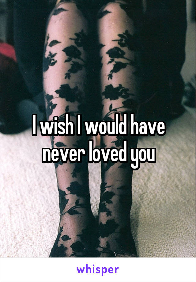 I wish I would have never loved you