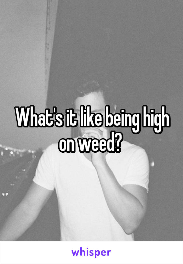 What's it like being high on weed?