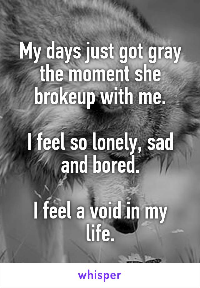 My days just got gray the moment she brokeup with me.  I feel so lonely, sad and bored.  I feel a void in my life.