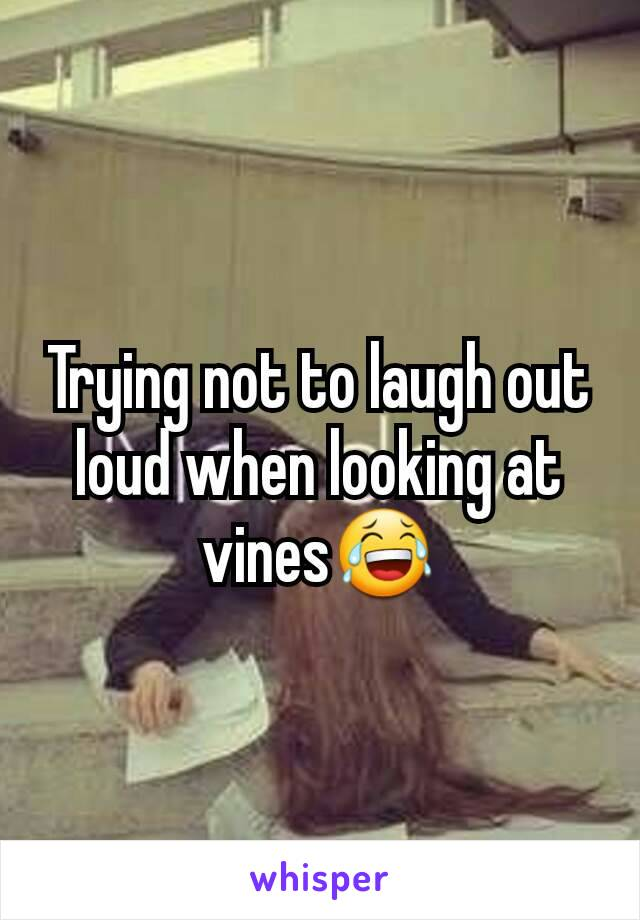 Trying not to laugh out loud when looking at vines😂