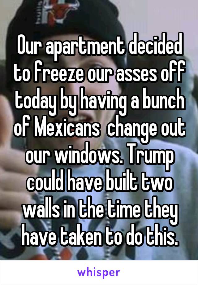Our apartment decided to freeze our asses off today by having a bunch of Mexicans  change out our windows. Trump could have built two walls in the time they have taken to do this.