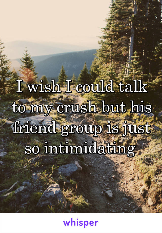 I wish I could talk to my crush but his friend group is just so intimidating