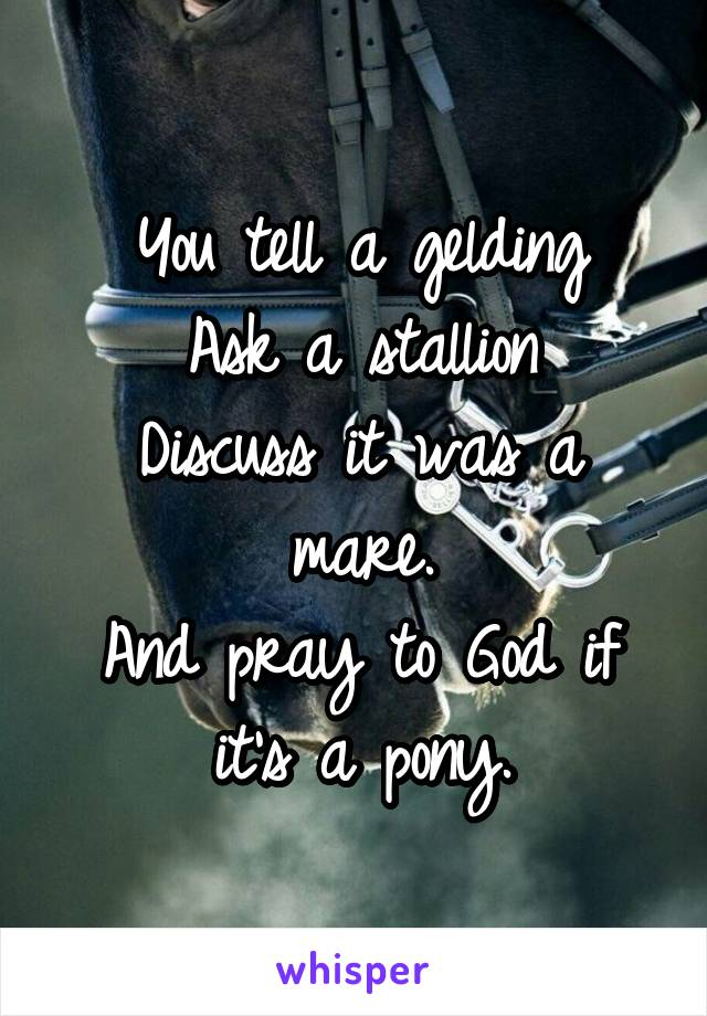 You tell a gelding Ask a stallion Discuss it was a mare. And pray to God if it's a pony.