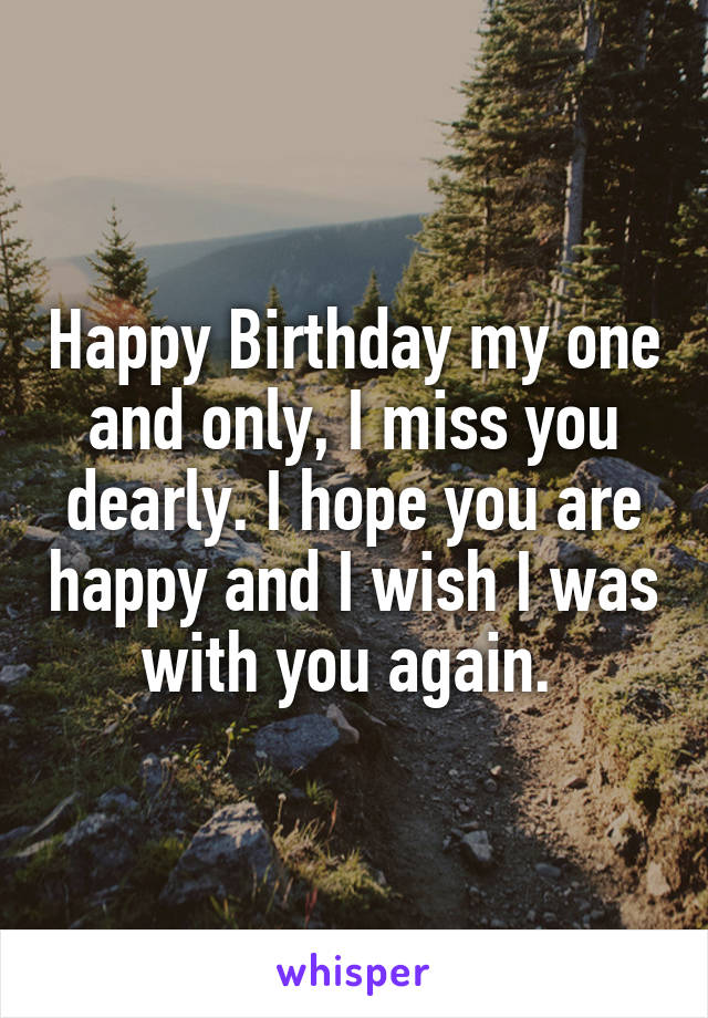 Happy Birthday my one and only, I miss you dearly. I hope you are happy and I wish I was with you again.