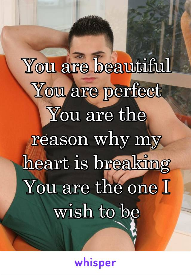 You are beautiful You are perfect You are the reason why my heart is breaking You are the one I wish to be