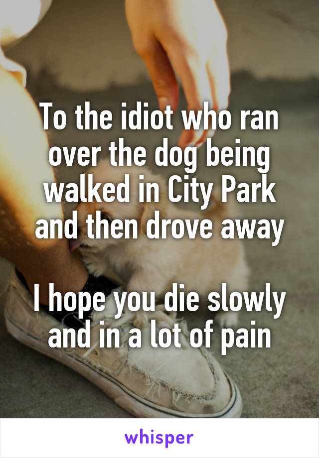 To the idiot who ran over the dog being walked in City Park and then drove away  I hope you die slowly and in a lot of pain
