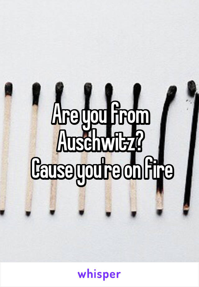 Are you from Auschwitz?  Cause you're on fire