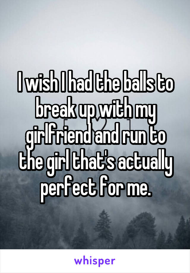 I wish I had the balls to break up with my girlfriend and run to the girl that's actually perfect for me.