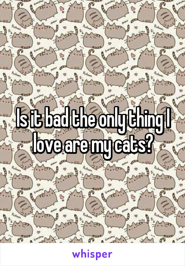 Is it bad the only thing I love are my cats?