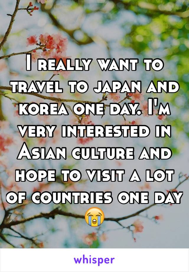 I really want to travel to japan and korea one day. I'm very interested in Asian culture and hope to visit a lot of countries one day 😭