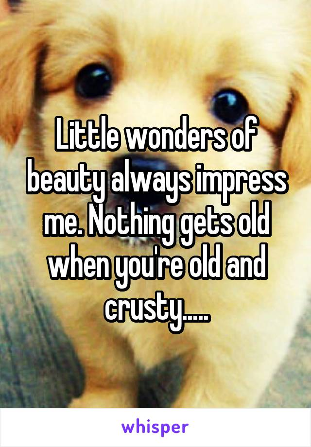 Little wonders of beauty always impress me. Nothing gets old when you're old and crusty.....