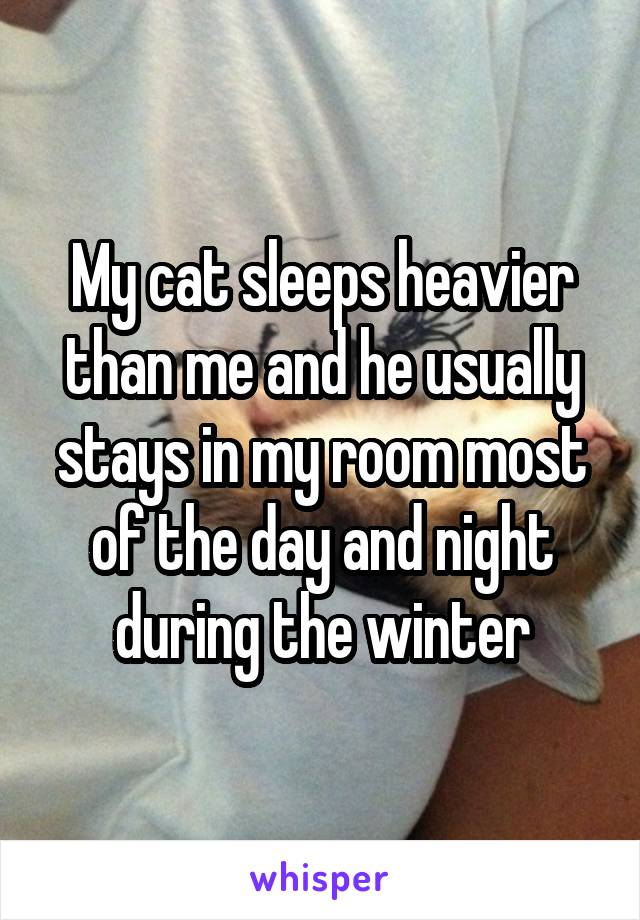 My cat sleeps heavier than me and he usually stays in my room most of the day and night during the winter
