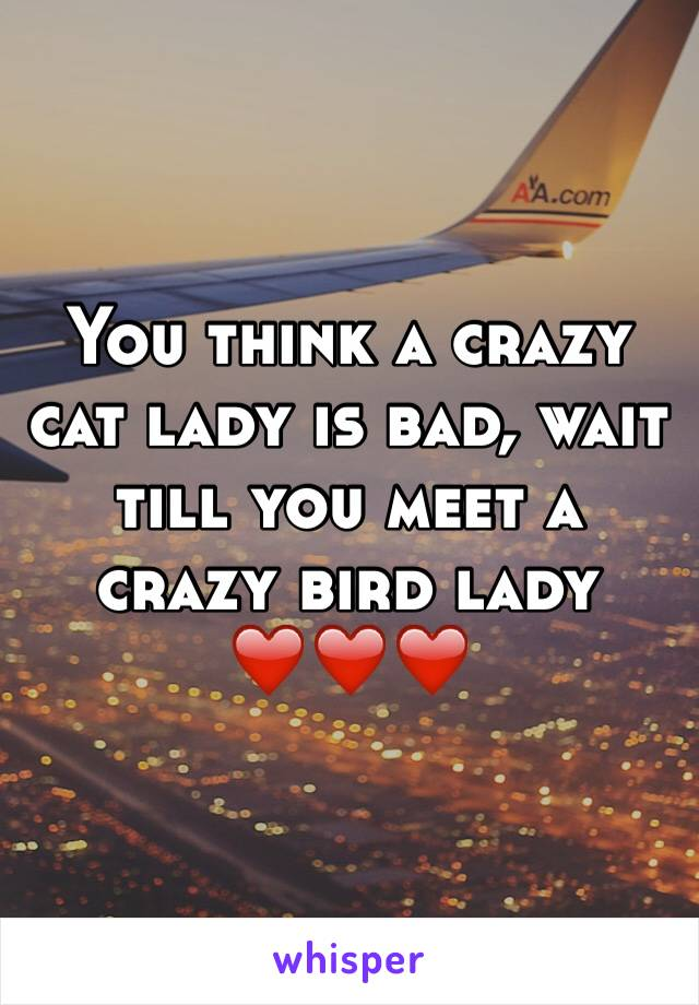 You think a crazy cat lady is bad, wait till you meet a crazy bird lady ❤️❤️❤️