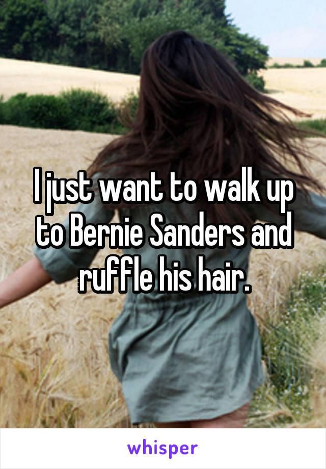 I just want to walk up to Bernie Sanders and ruffle his hair.