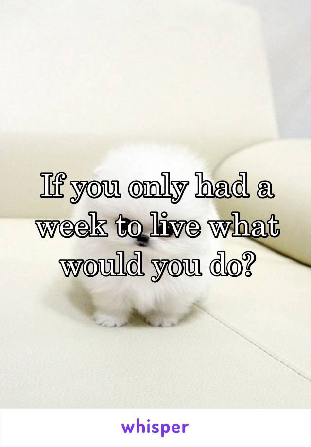 If you only had a week to live what would you do?