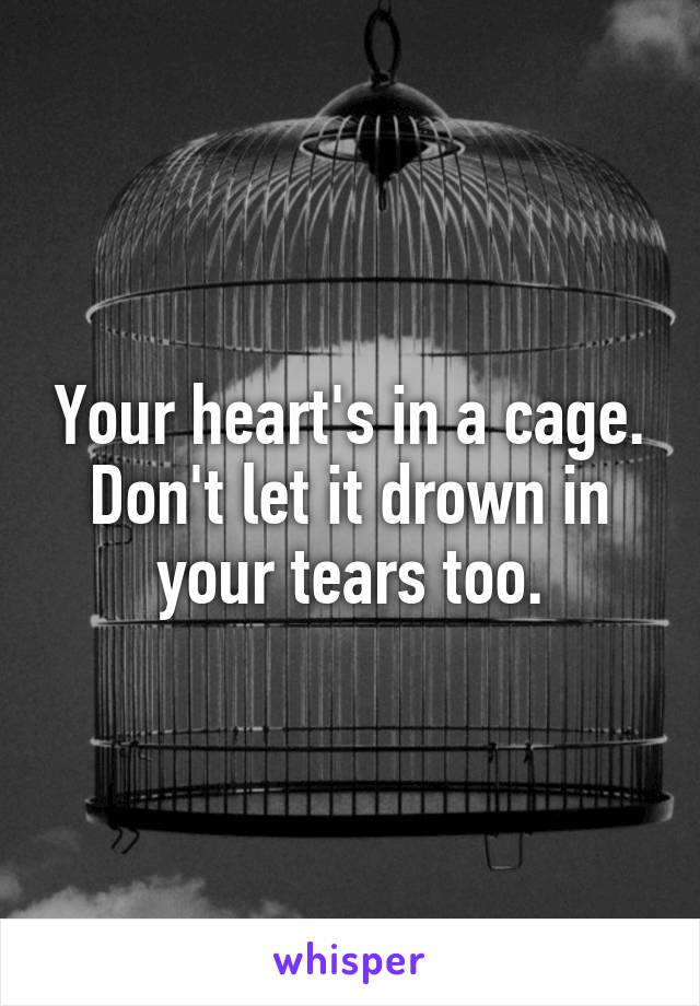 Your heart's in a cage. Don't let it drown in your tears too.