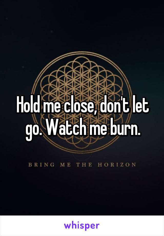 Hold me close, don't let go. Watch me burn.