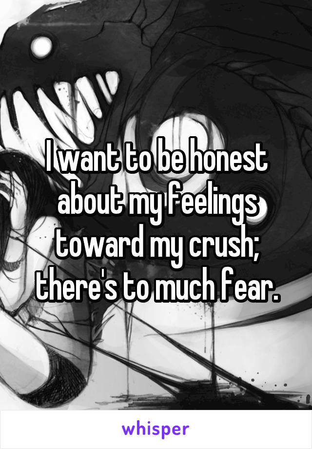 I want to be honest about my feelings toward my crush; there's to much fear.