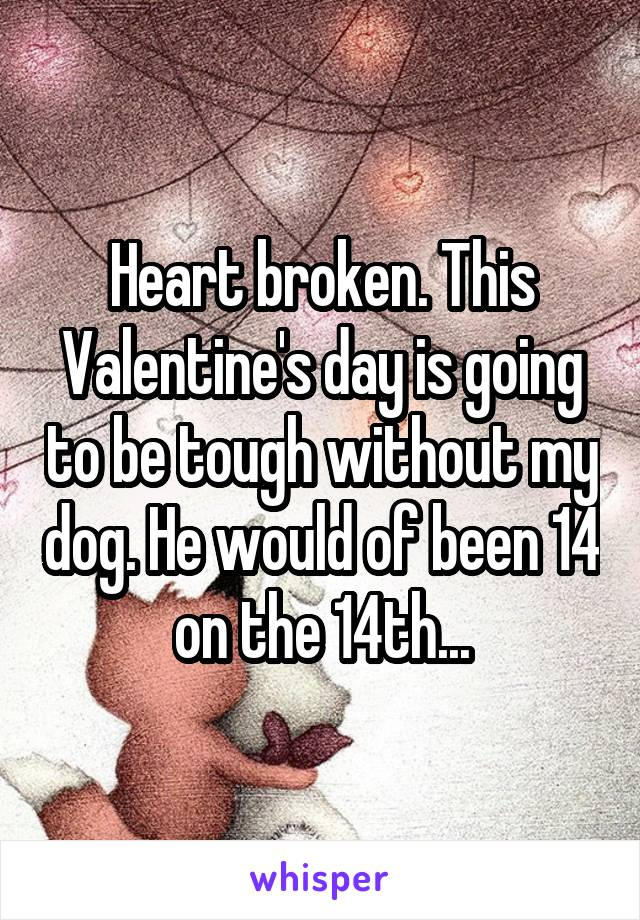 Heart broken. This Valentine's day is going to be tough without my dog. He would of been 14 on the 14th...