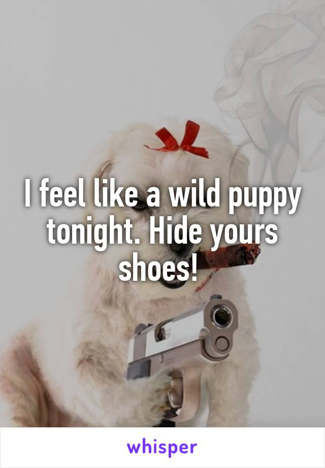 I feel like a wild puppy tonight. Hide yours shoes!