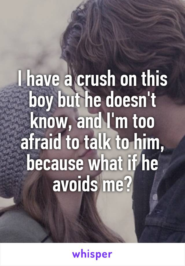 I have a crush on this boy but he doesn't know, and I'm too afraid to talk to him, because what if he avoids me?