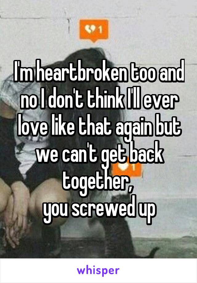 I'm heartbroken too and no I don't think I'll ever love like that again but we can't get back together,  you screwed up