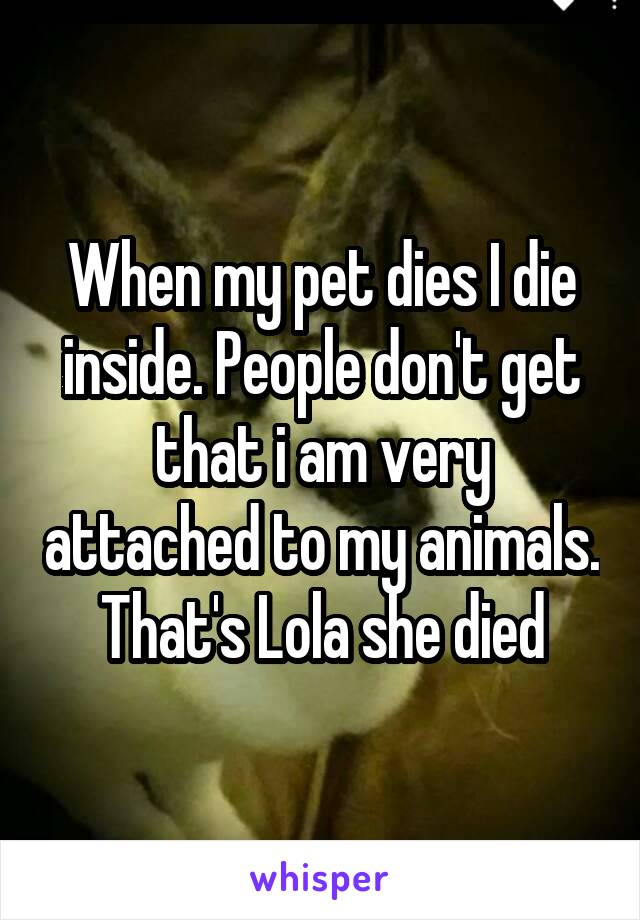 When my pet dies I die inside. People don't get that i am very attached to my animals. That's Lola she died