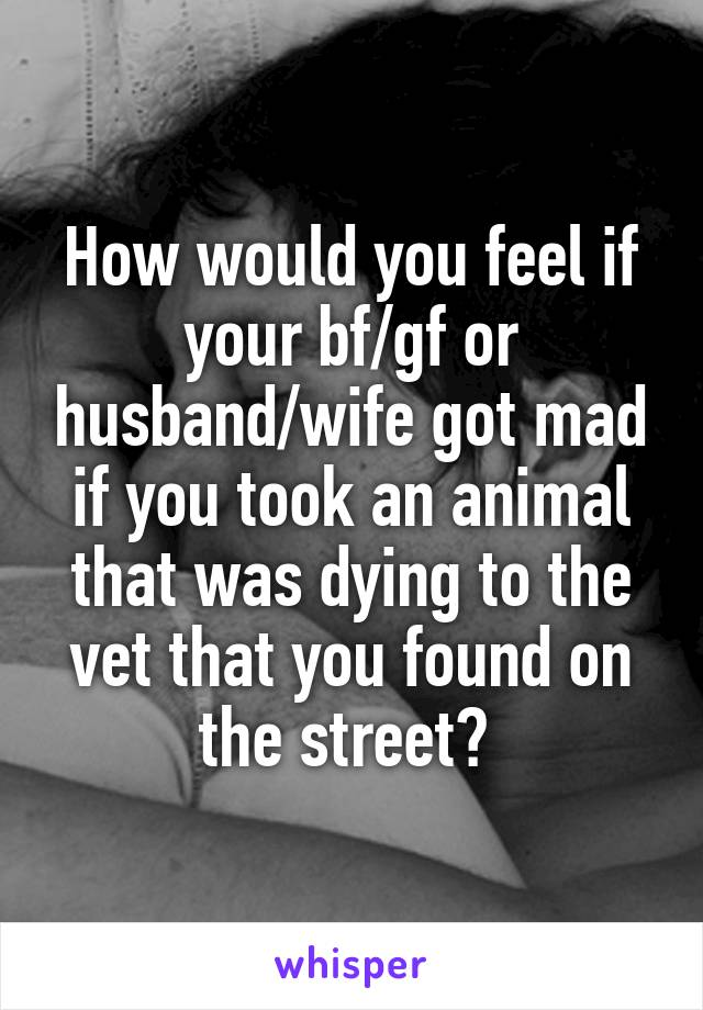 How would you feel if your bf/gf or husband/wife got mad if you took an animal that was dying to the vet that you found on the street?
