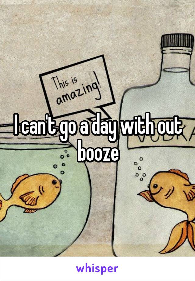 I can't go a day with out booze
