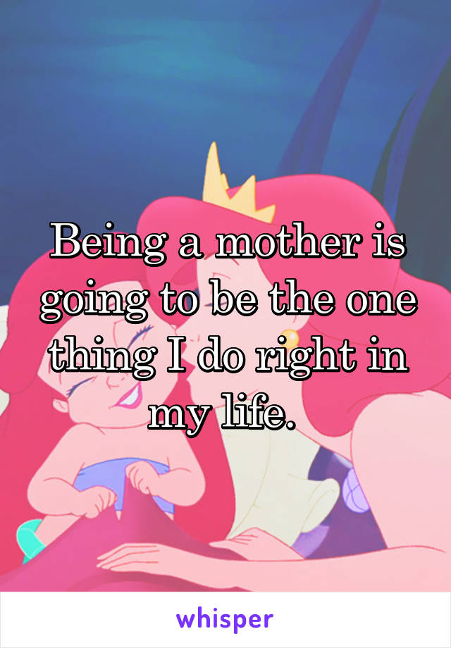 Being a mother is going to be the one thing I do right in my life.