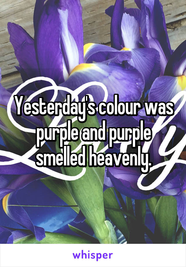 Yesterday's colour was purple and purple smelled heavenly.