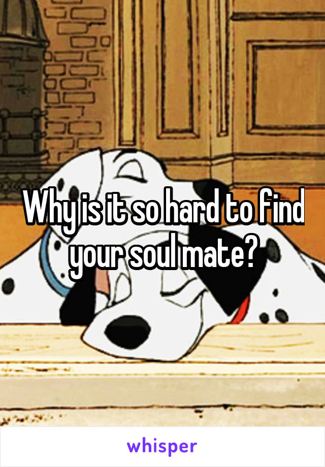 Why is it so hard to find your soul mate?