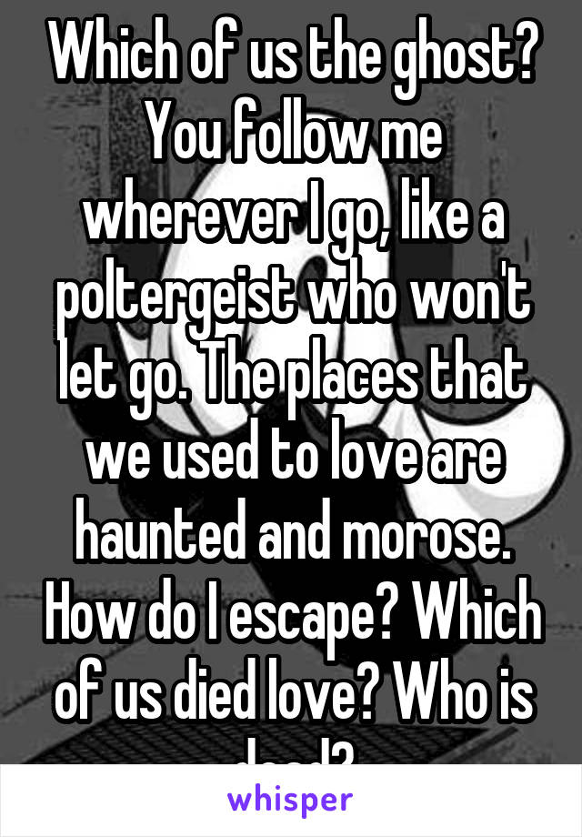 Which of us the ghost? You follow me wherever I go, like a poltergeist who won't let go. The places that we used to love are haunted and morose. How do I escape? Which of us died love? Who is dead?