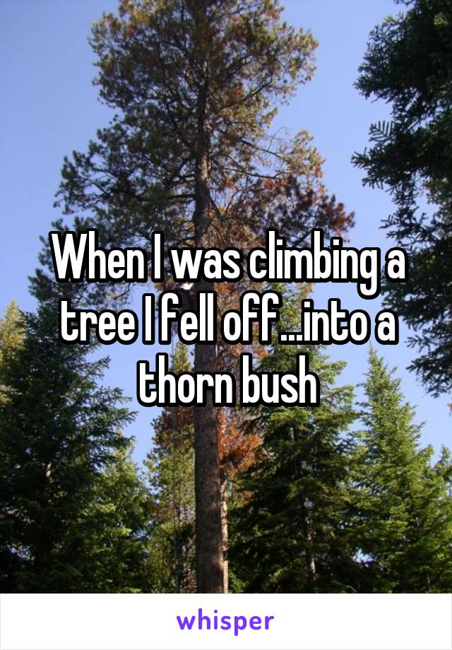 When I was climbing a tree I fell off...into a thorn bush