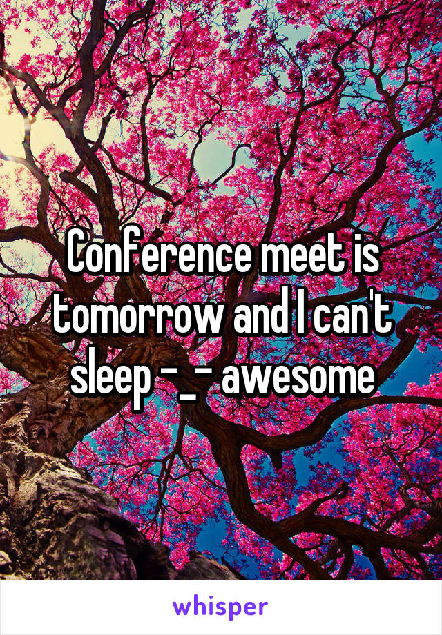 Conference meet is tomorrow and I can't sleep -_- awesome