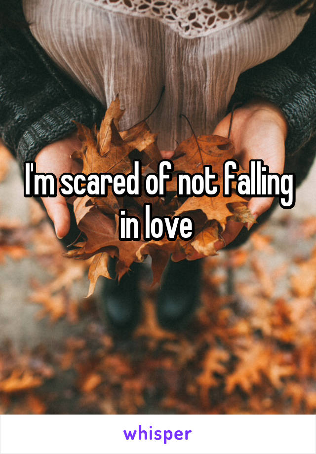 I'm scared of not falling in love