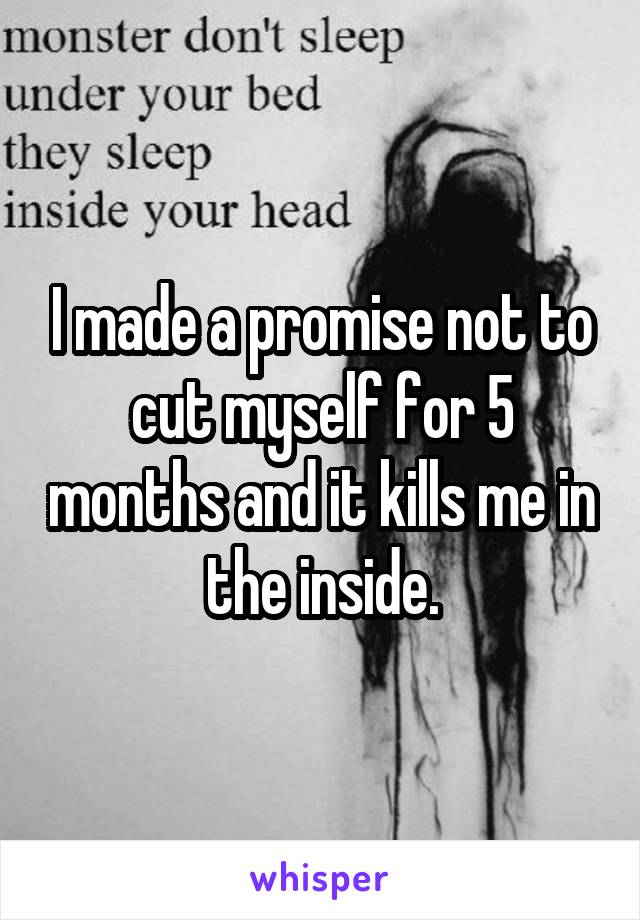 I made a promise not to cut myself for 5 months and it kills me in the inside.
