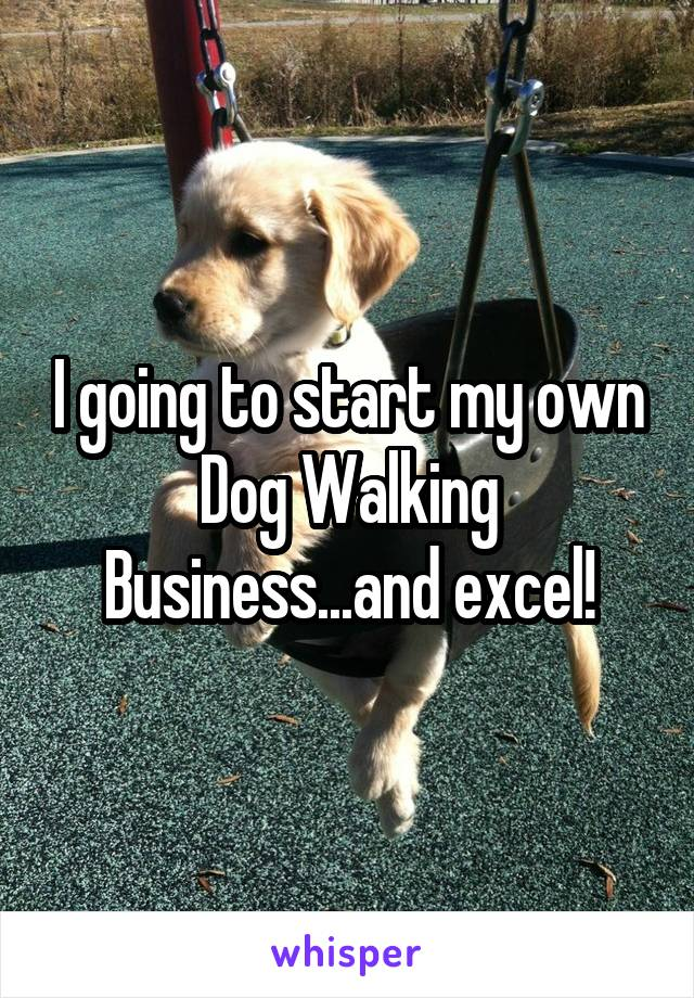 I going to start my own Dog Walking Business...and excel!