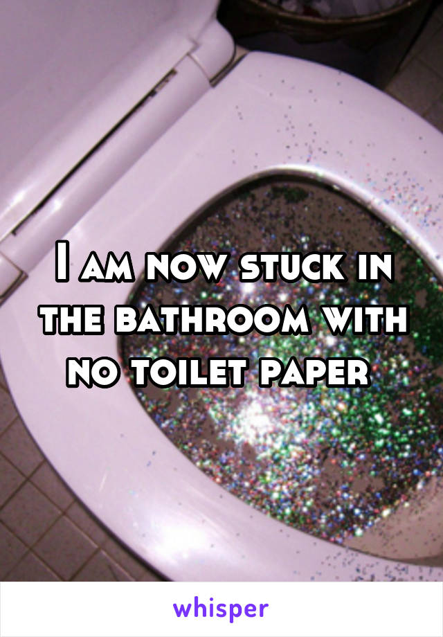 I am now stuck in the bathroom with no toilet paper