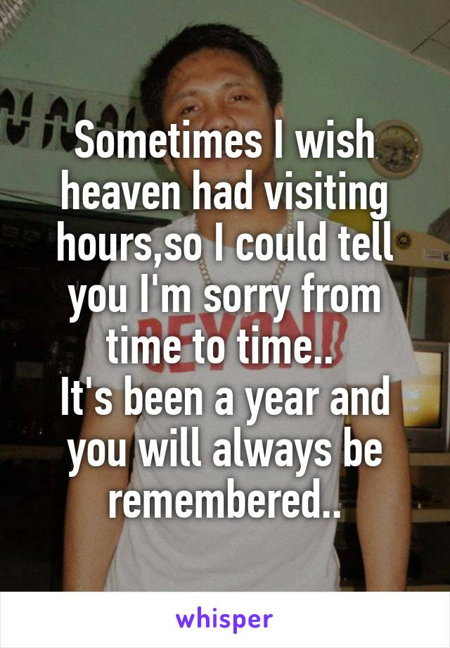 Sometimes I wish heaven had visiting hours,so I could tell you I'm sorry from time to time..  It's been a year and you will always be remembered..