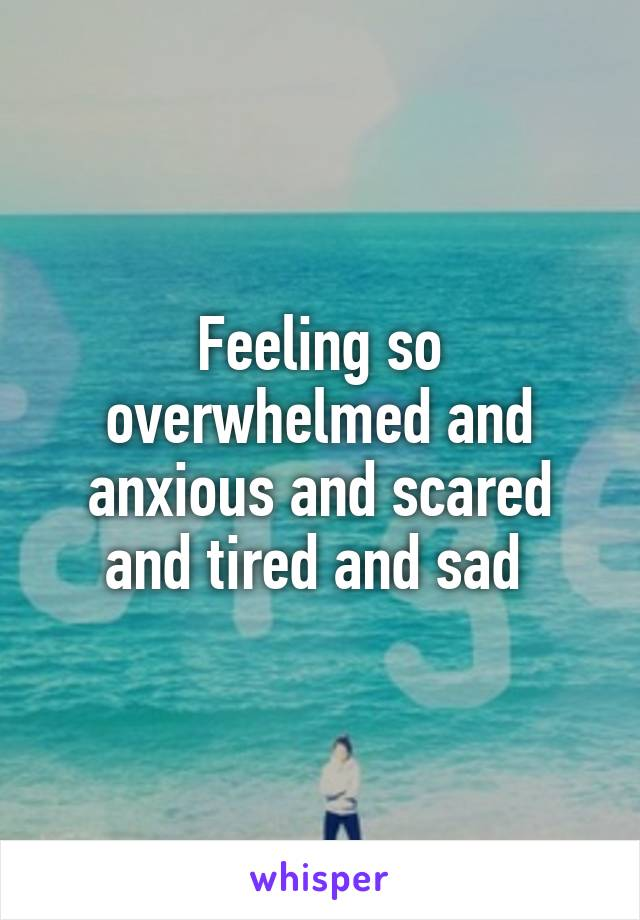 Feeling so overwhelmed and anxious and scared and tired and sad
