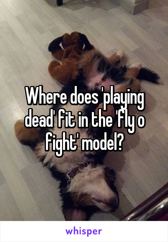 Where does 'playing dead' fit in the 'fly o fight' model?