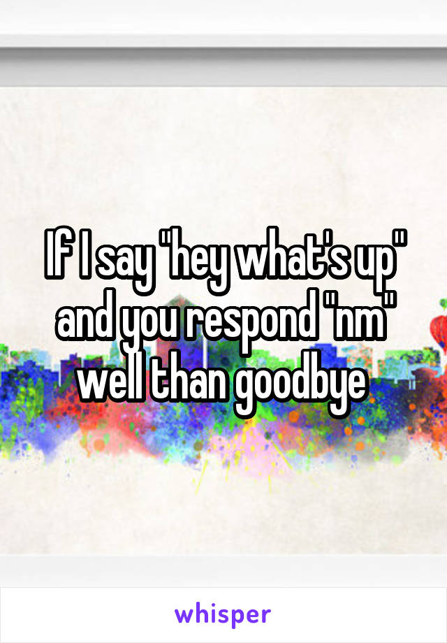 """If I say """"hey what's up"""" and you respond """"nm"""" well than goodbye"""