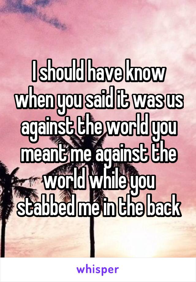 I should have know when you said it was us against the world you meant me against the world while you stabbed me in the back