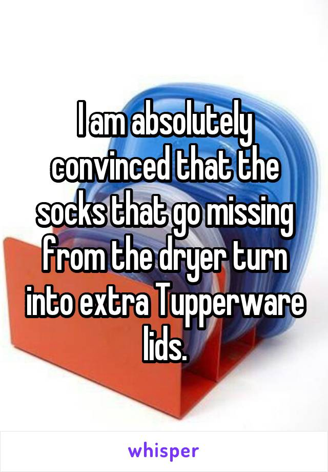 I am absolutely convinced that the socks that go missing from the dryer turn into extra Tupperware lids.
