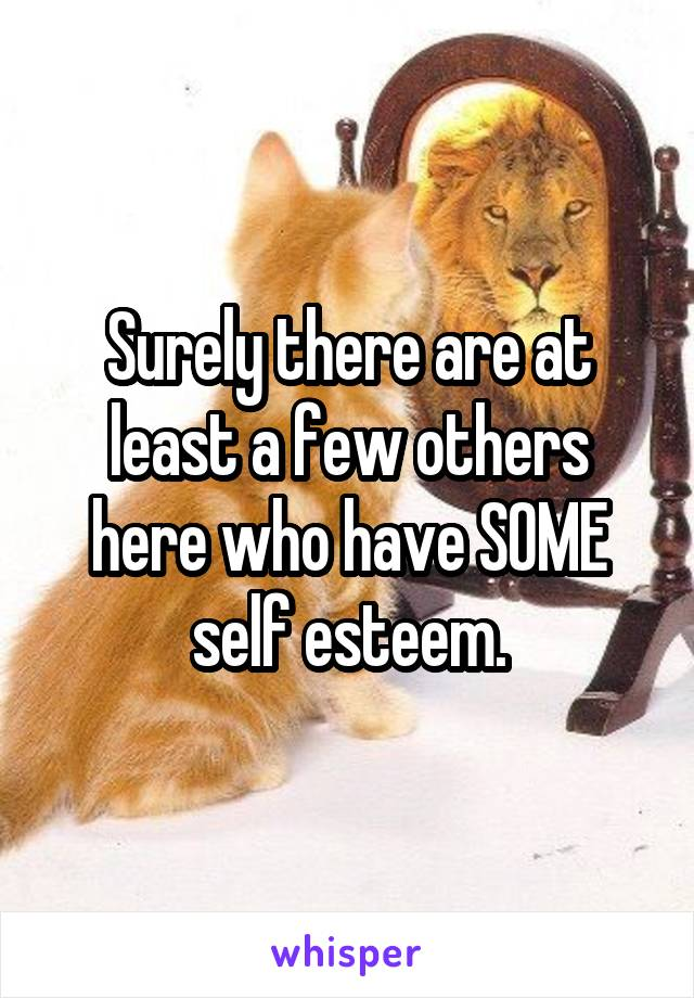 Surely there are at least a few others here who have SOME self esteem.