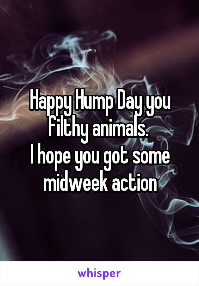 Happy Hump Day you filthy animals.  I hope you got some midweek action