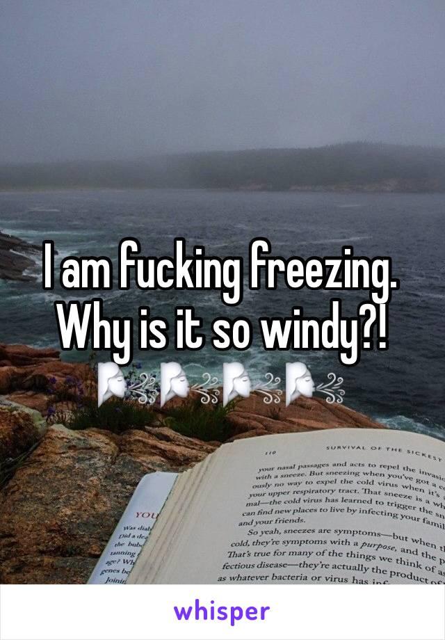 I am fucking freezing.  Why is it so windy?! 🌬🌬🌬🌬